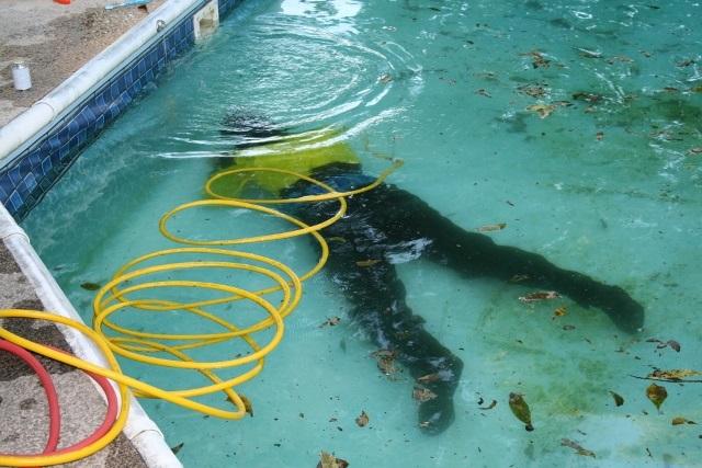 Pool Repair Dallas Fort Worth Texas Pool Leak Repair